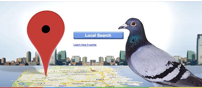 pigeon local seo algo